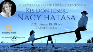 KIS DÖNTÉSEK - MKA